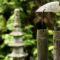 relaksacja-zen-natura